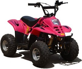See more photos for this Chinese 50cc LG Type R 4 Stroke ATV Four Wheeler, 2014 motorcycle listing