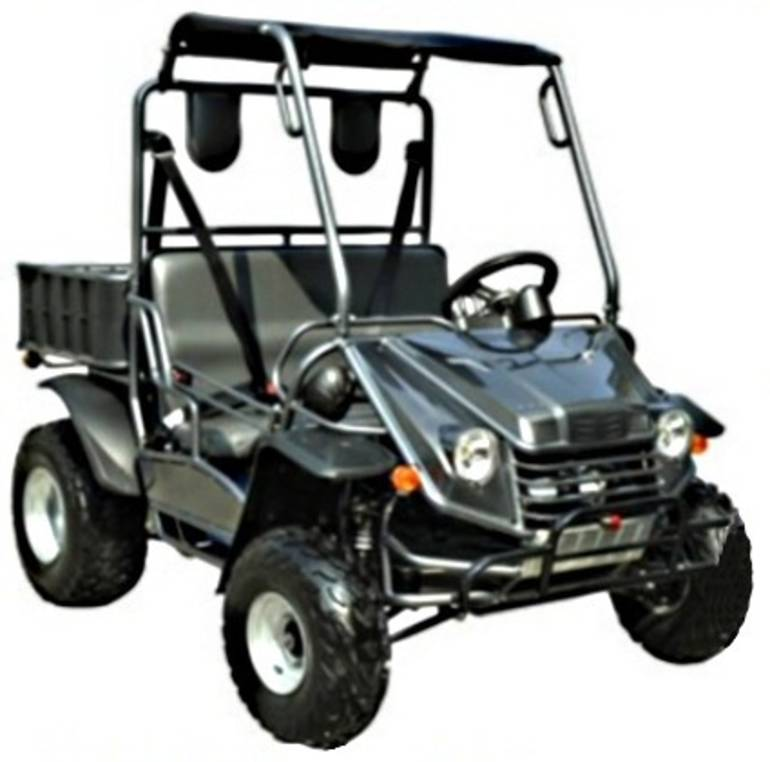 See more photos for this Zpw 200cc Stomper UTV Utility Vehicle, 2014 motorcycle listing