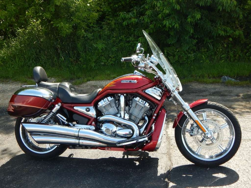 2005 harley davidson v rod screamin eagle motorcycle from for Harley davidson motor credit