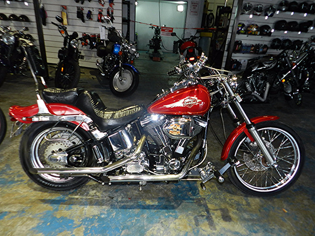 1995 Harley Davidson FXSTC SOFTAIL, motorcycle listing