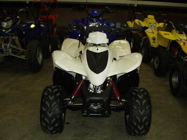 2008 Kymco MONGOOSE 70, motorcycle listing