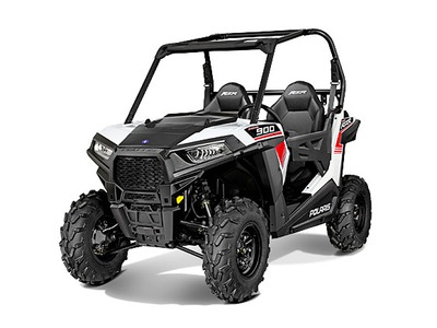 2015 Polaris RZR 900 White Lightning, motorcycle listing